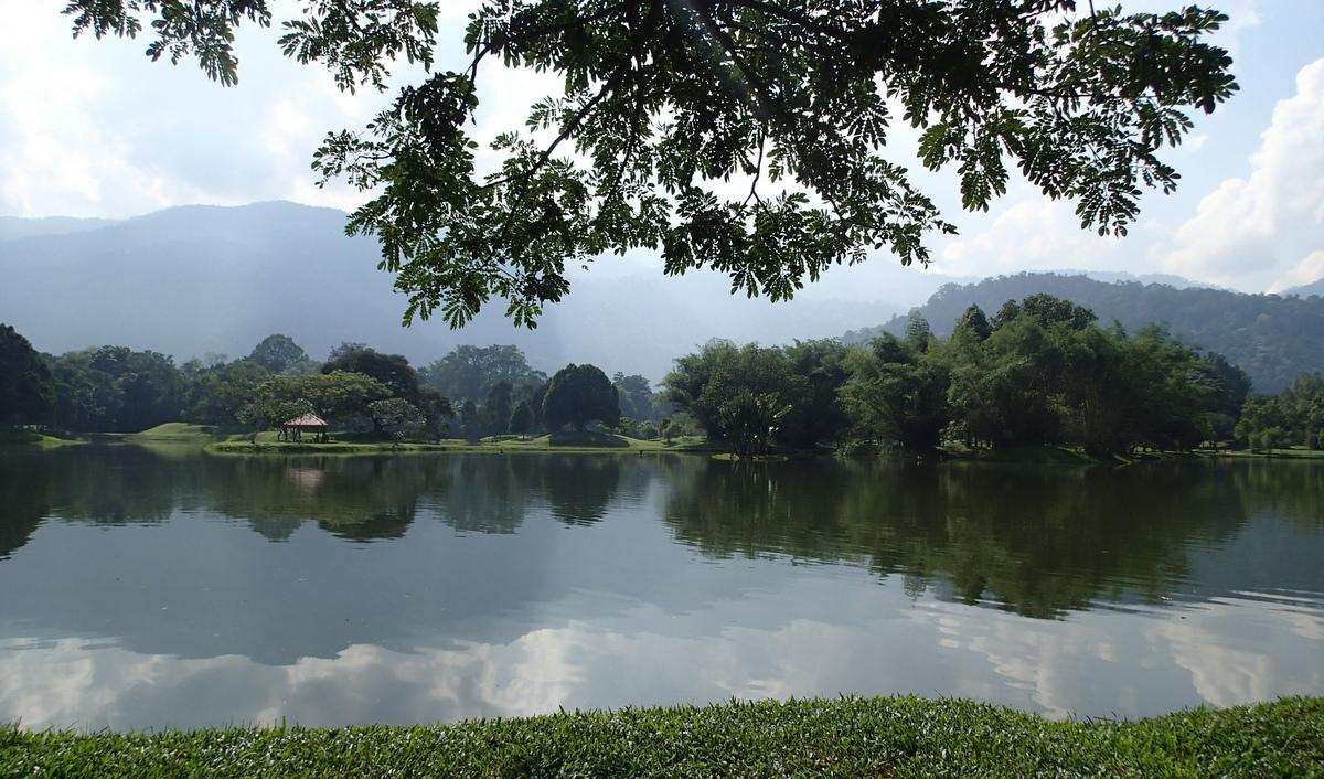 The Lake Gardens