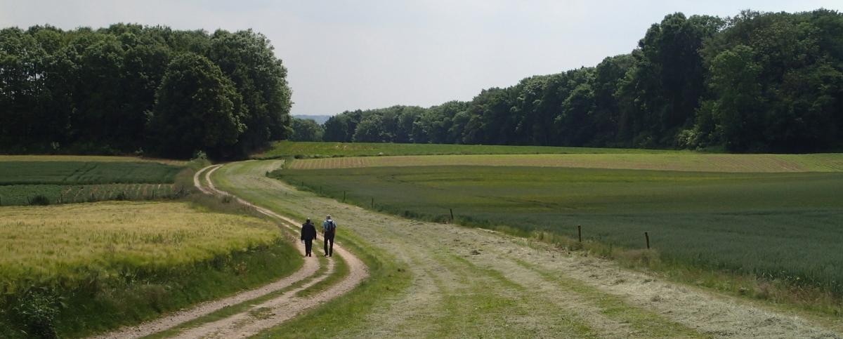 Pilgrims Path