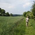 Pilgrim Path\