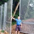 Bukit Kiara fencing