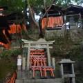 Many shrines