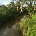 Romantic river
