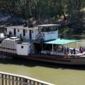 Echuca, Paddle steamer