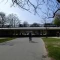 The Vondelbrug