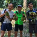 The durian pickers
