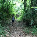 Nice walk to Sg Dal