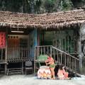 Orang Asli hut