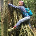 Suat as a tree hugger