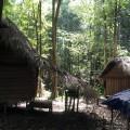 Orang Asli huts
