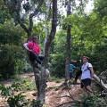 Rina as tree climber