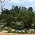 The scenic Muslim cemetery is still there